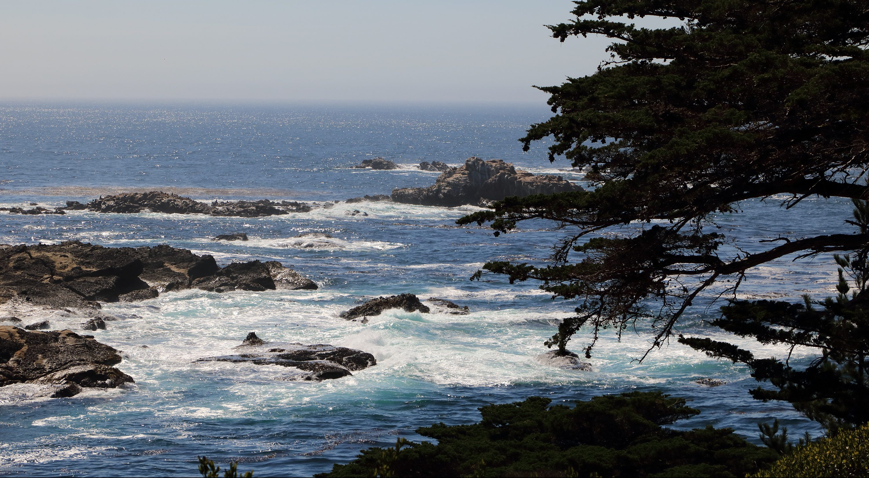 Point Lobos California Pacific Coast Highway 1 Big Sur