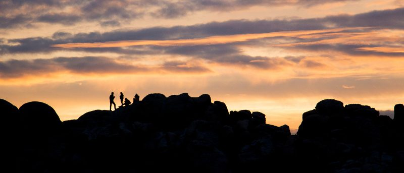 Joshua Tree National Park free days