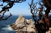 Point Lobos California Pacific Coast Highway