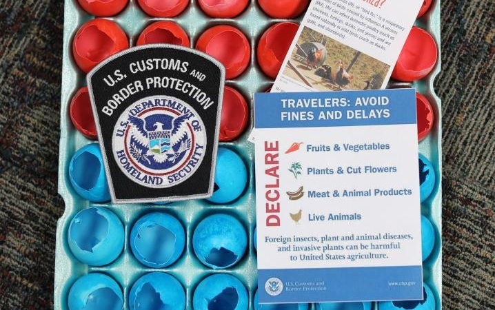 Cascarones Easter Eggs CBP Customs and Border Protection