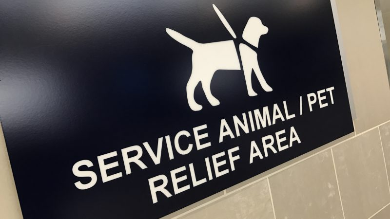 Comfort animals service animals DTW Detroit Metro airlines banned WOOFF Act emotional support animals
